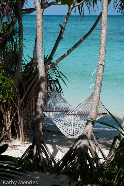 Hammock outside our chalet.