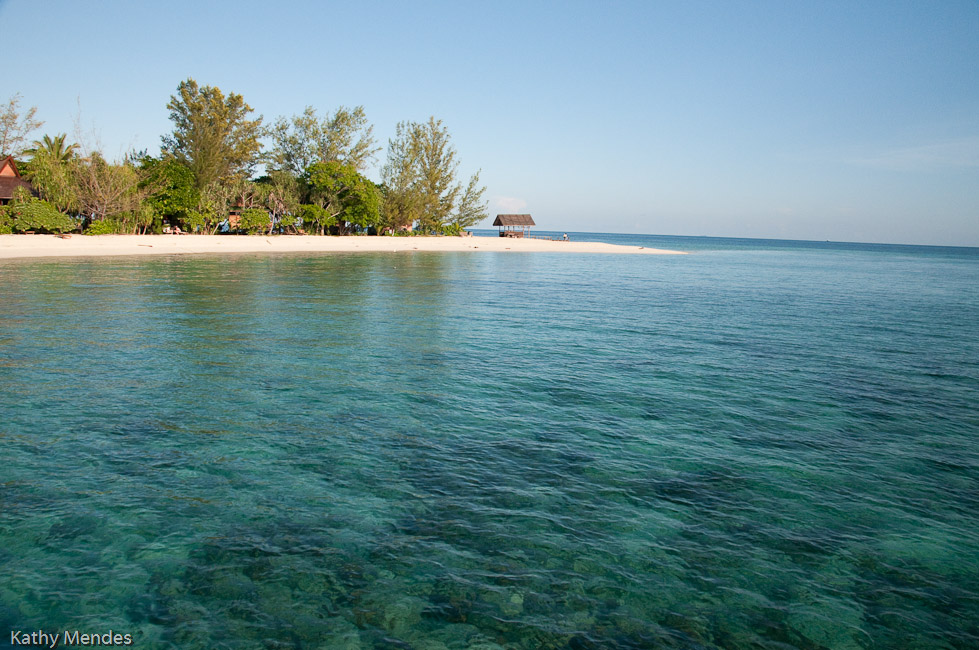 The beautiful water of the reef between the dive locker and the island was home to huge schools of fish!