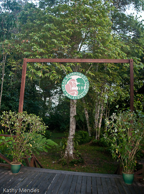 Welcome to Borneo Rainforest Lodge