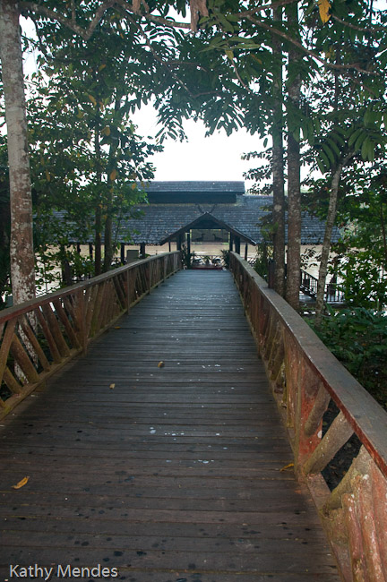 The walkway from the boat dock/dining area to the reception area and rooms.