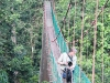 Randy crosses the canopy walkway.