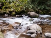 Slow motion of the water in the rocky creek bed creates a soft dreamy feel.
