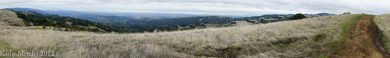 I'm high on a hill overlooking the San Francisco Bay Area.