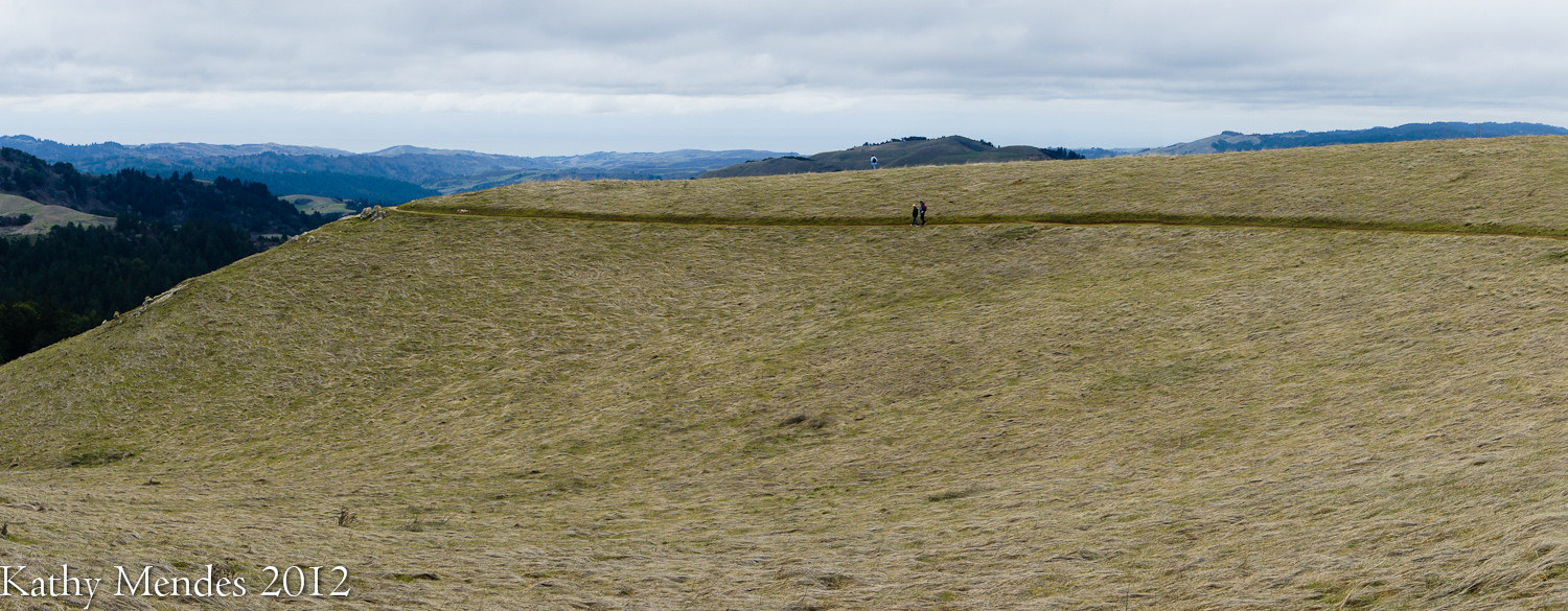 Hikers on the Ridge Trail, Russian Ridge Open Space Preserve