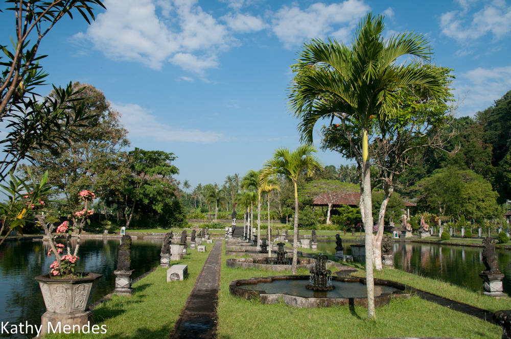 Tirta Gangga Garden Between Pools