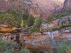 Cliffs and Trees Surrounding the Emerald Pools - Zion National Park