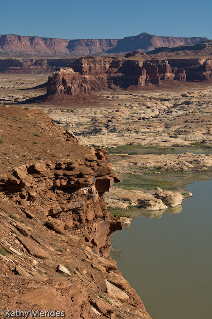 A Very Green Lake Powell