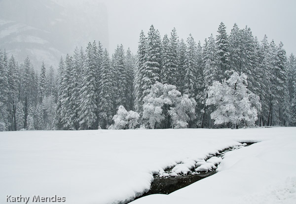 A Snowy Day in Yosemite