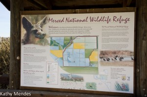 Welcome to the Merced National Wildlife Refuge