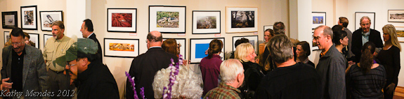Magic of Point Lobos Gallery Opening Reception
