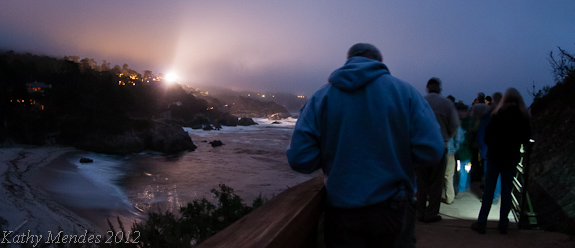 Guided Moonlight (and spotlight) Walk at Bird Rock, Point Lobos State Natural Reserve